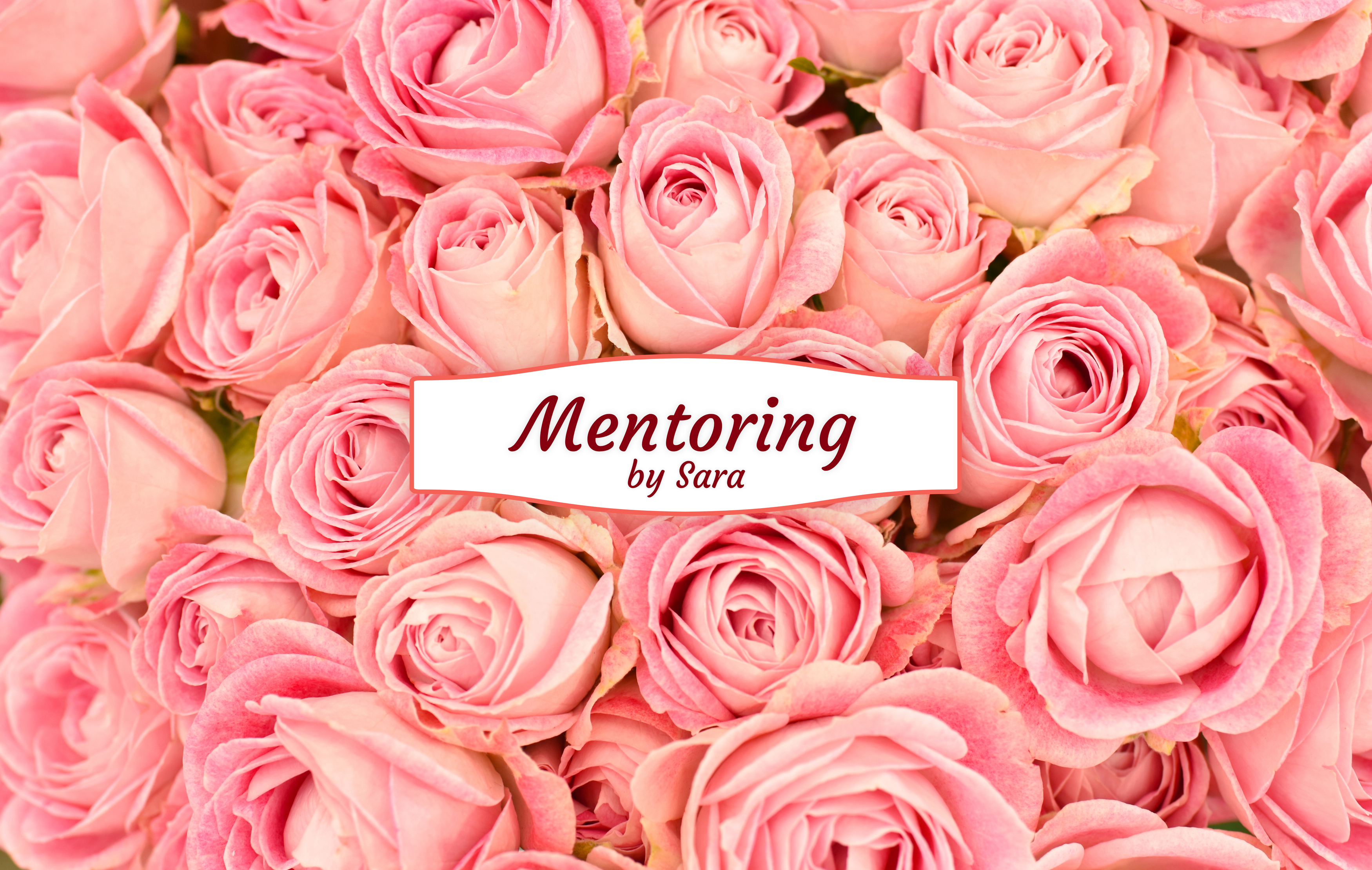 Mentoring Packages